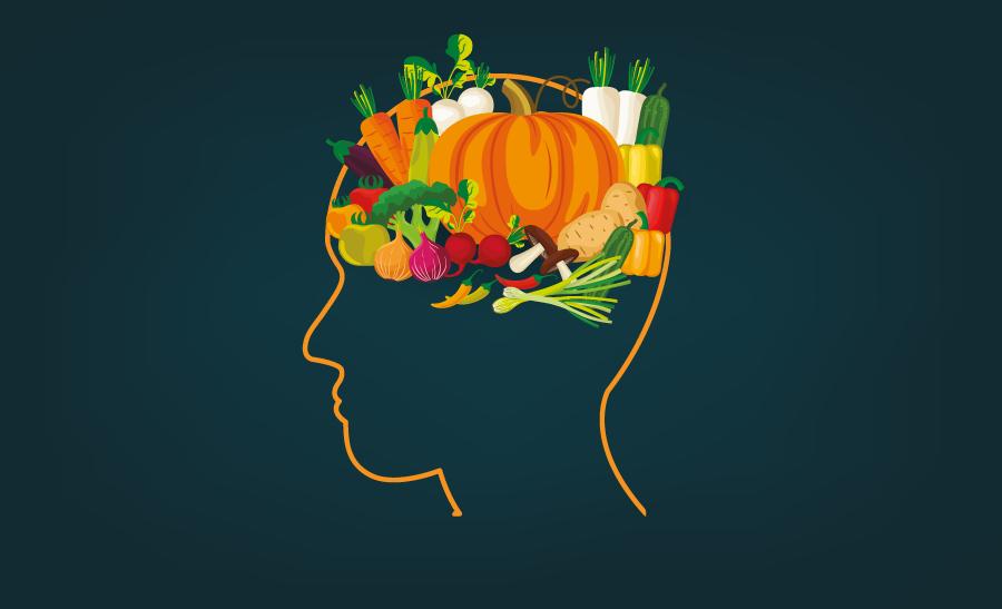 Notícias | Hi Nutrition